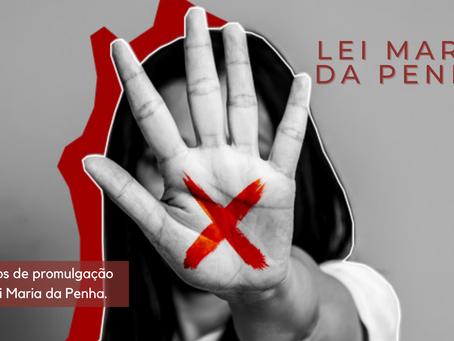 Noemia Rocha destaca 15 anos da Lei Maria da Penha