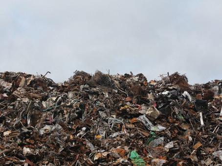 Gestão de resíduos: como o nosso lixo afeta o meio ambiente?
