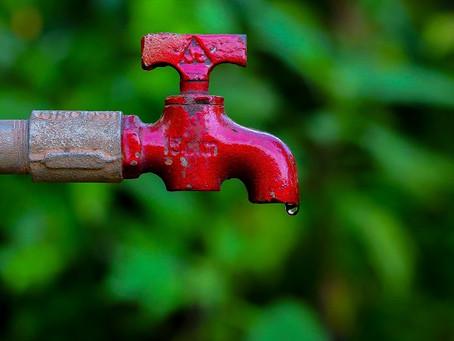 7 Formas de ajudar a preservar o meio ambiente