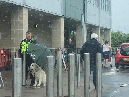 Segurança de supermercado usa o próprio guarda-chuva para proteger cão na Escócia
