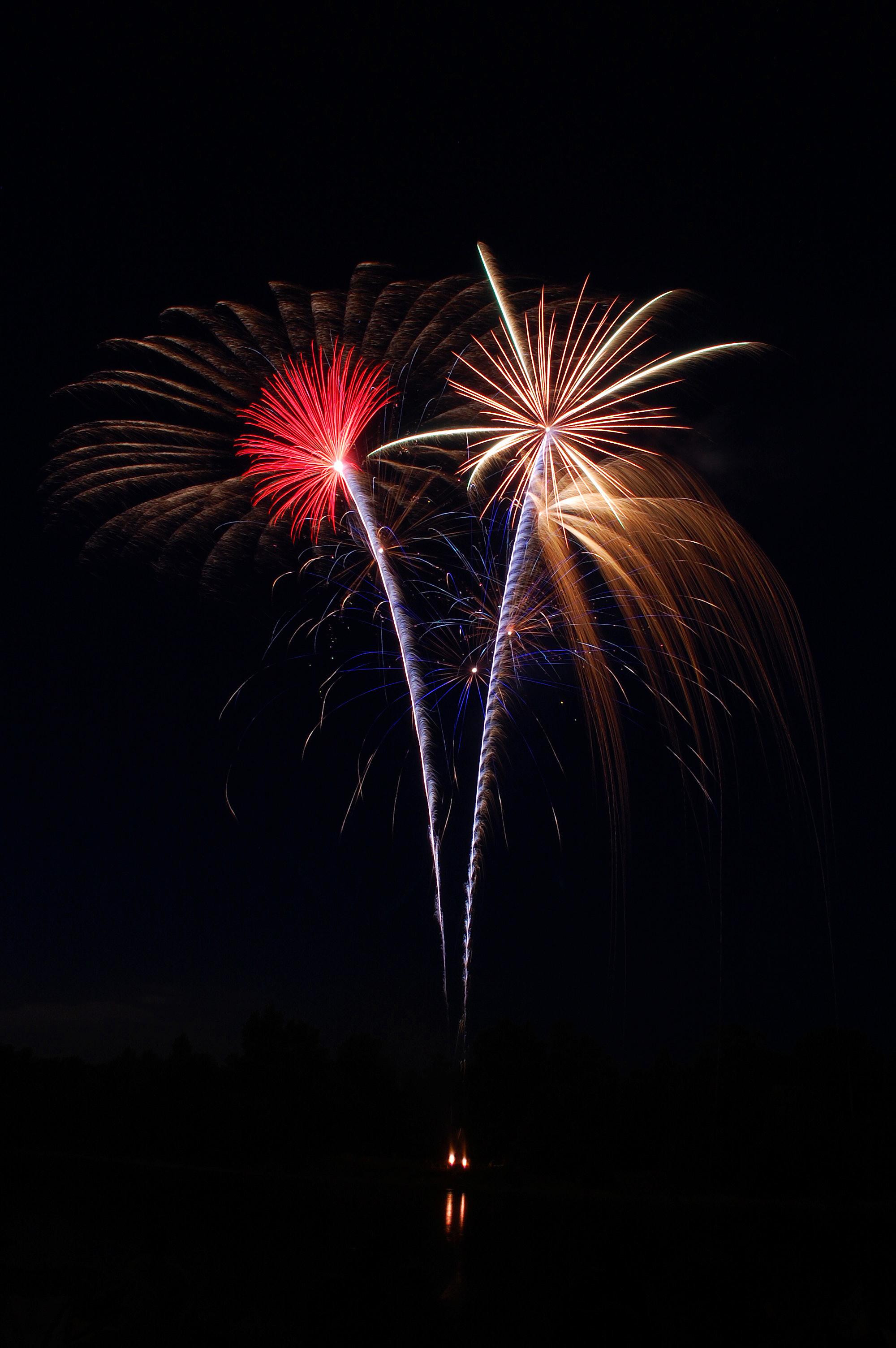 Fireworks red blossom.jpg