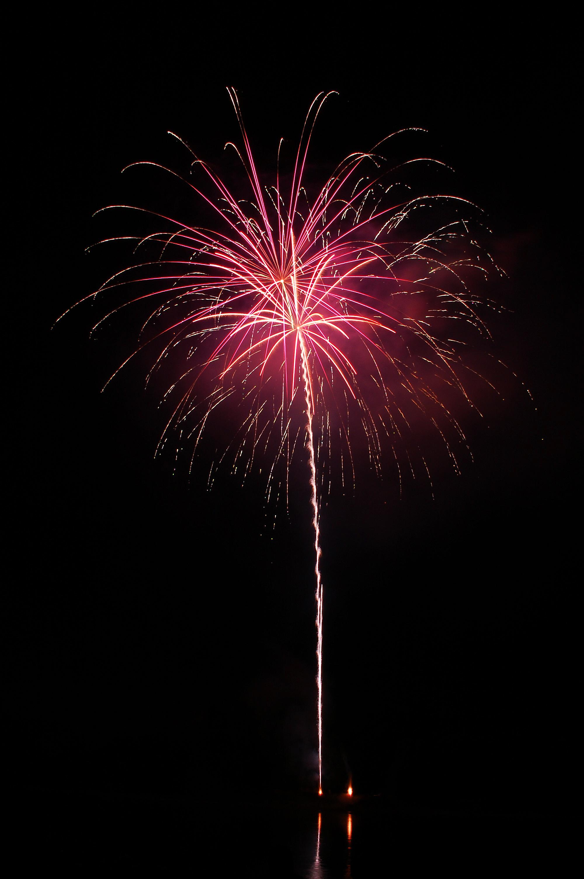 Firework single pink.jpg