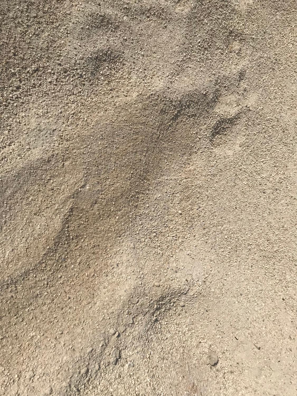Concrete Screening Sand