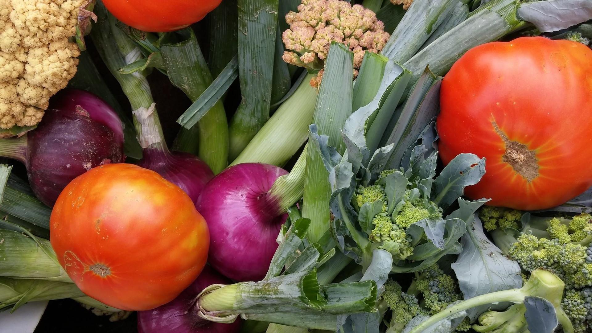 Porri, cavolfiori, pomodori e cipolle rosse..