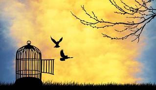 Sorumluluk Almak Özgürleştirir