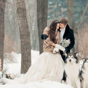 White Wedding image