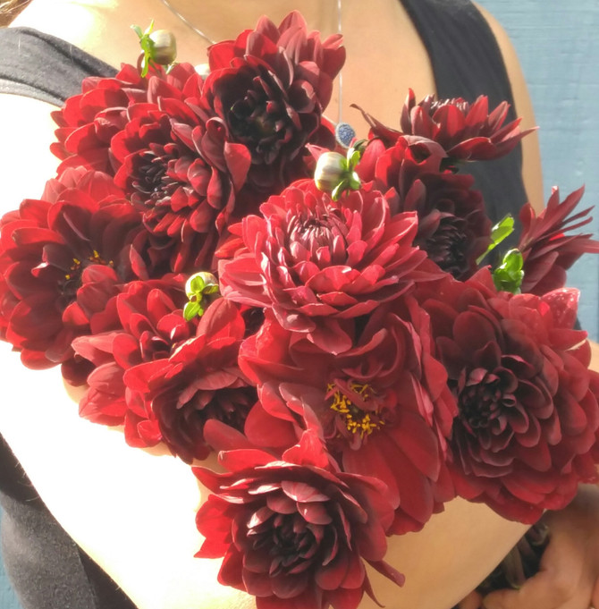Choose Your Wedding Flowers Wisely