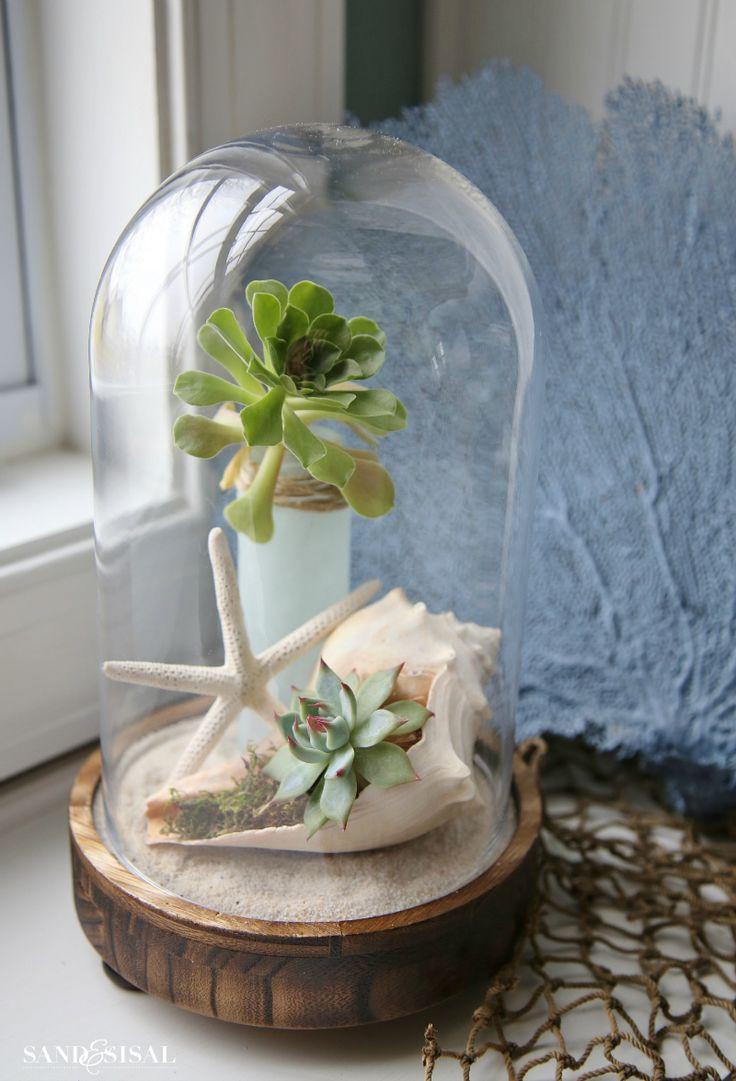 Succulent Cloche - Google Image