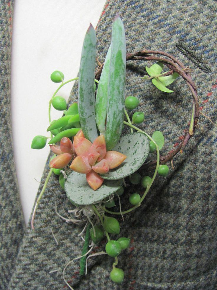 Succulent Boutonniere image