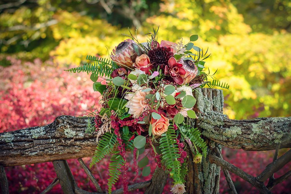 fall wedding bouquet, cascading wedding bouquet, local fall Dahlia