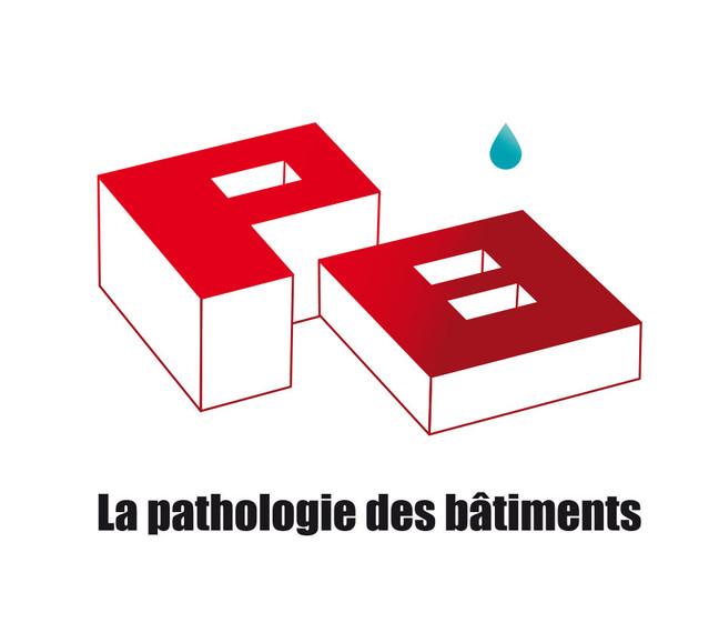 La pathologie des bâtiments