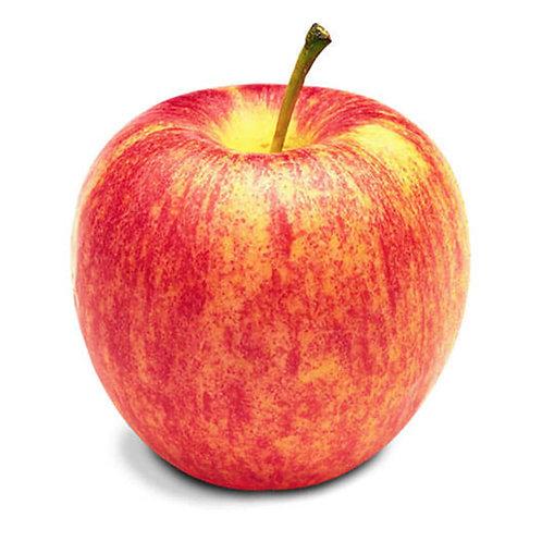 Apples - Gala BC