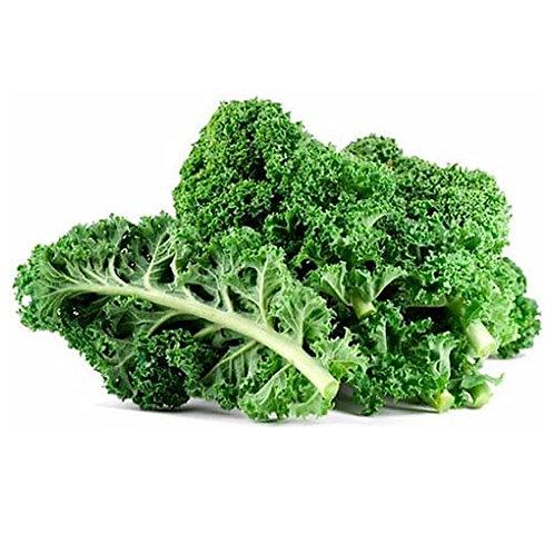 Kale -Green Ontario