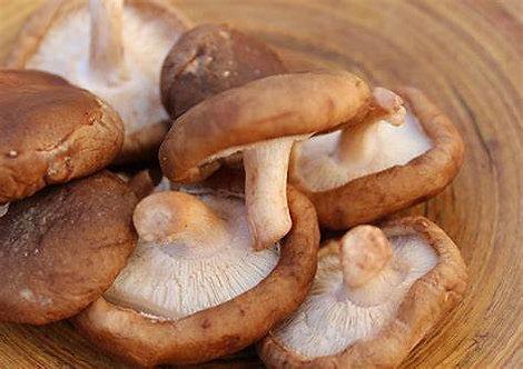 Mushrooms Shitake .5lb bag