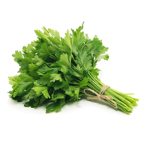 Cilantro per 20g package