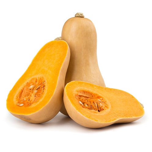 Squash - Butternut ON per pc