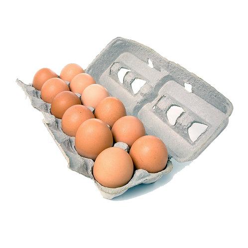 Eggs - Blossom Organic (dozen)