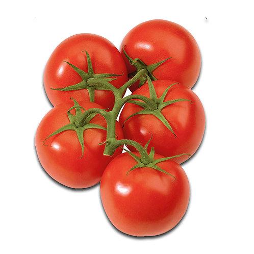ON Tomatoes - Vine