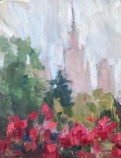 Les roses à Moscou