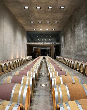 Дегустации вина на Лазурном берегу