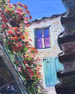 Géranium en Provence