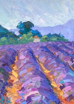 À midi en Provence