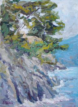 Les roches du Cap-Ferrat