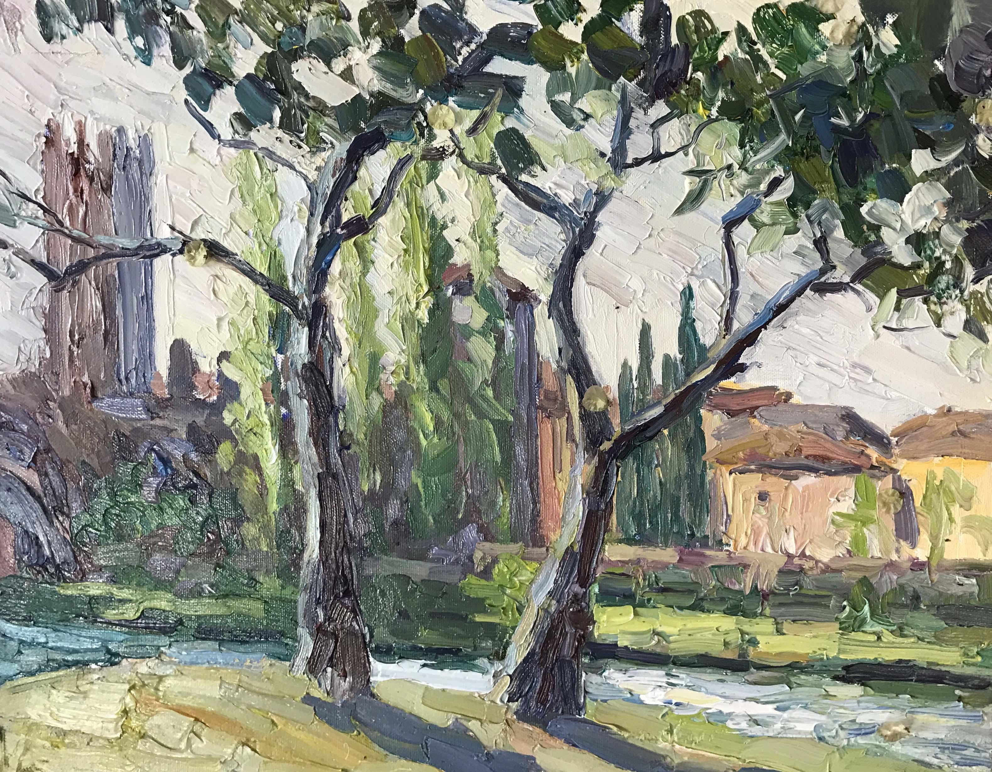 Вид на Кастельвекьо в Вероне