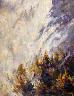 Le brouillard dans les montagnes