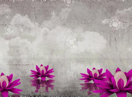 Canalisation de Bouddha