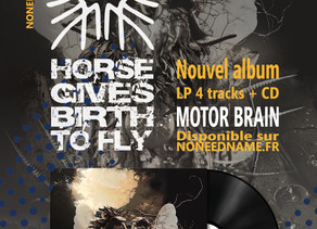 Nouvel album LP 4 titres + CD          HORSE GIVES BIRTH TO FLY