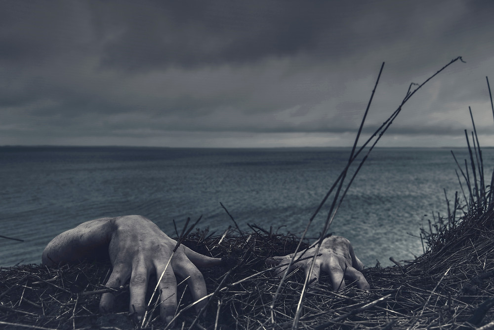 Two hands rising up from the ground, gripping dead plants with the ocean in the background