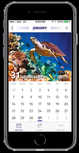 PlumTree_v2_Inapp_calendar_med.png