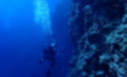 沖縄本島糸満で潜るFUNダイブならシートラベラー