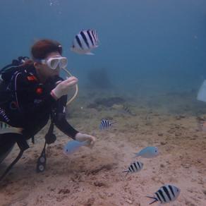 糸満最南部で体験ダイビング