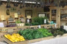 Zuchini lettuces table june 2019.jpg
