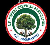 APFSA Logo
