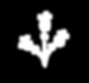 LINEN & TWINE flowe logo