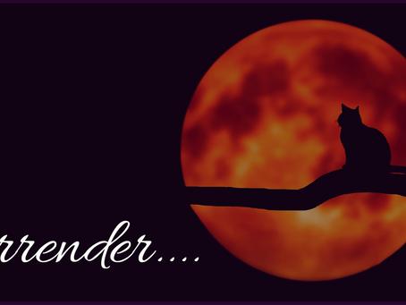 Surrender...