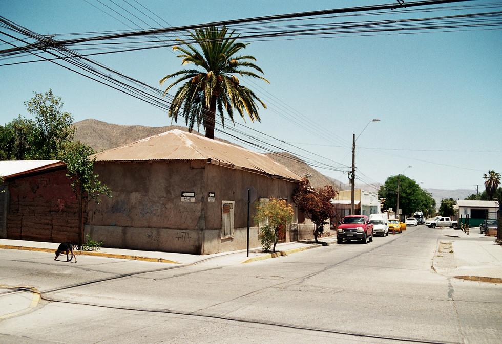 Vicuña, Chile 2016