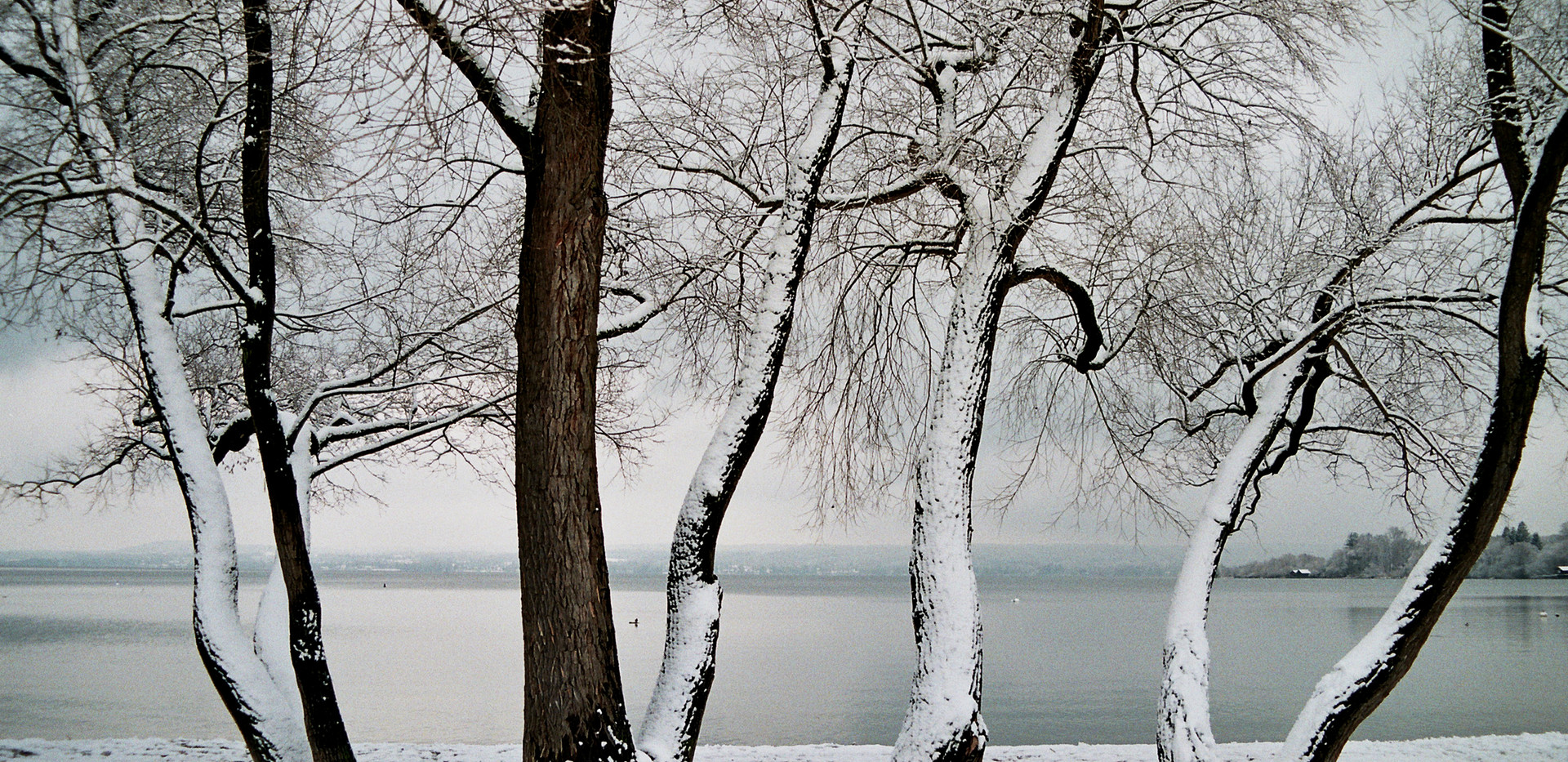 Ammersee, Germany, February 2018