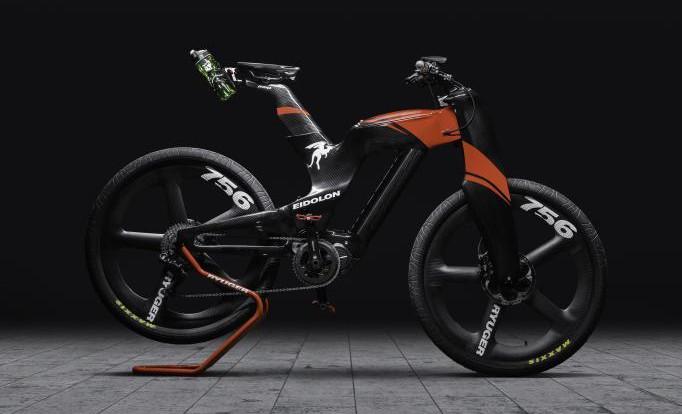Ryuger Eidolon BR-RTS E-Bike