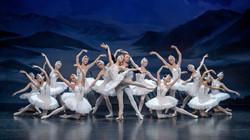 Selectie+Swan+Lake+Royal+Moscow+Ballet+2