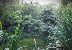 Woodchester Lakes