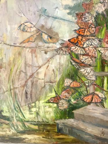 Butterflies Cluster