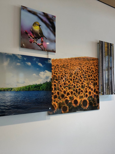 Photography on metal collaged on wall with offsets for Secura Insurance