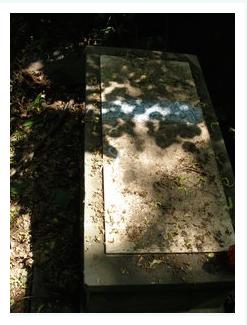 Adolf Szpilrajn's tombstone