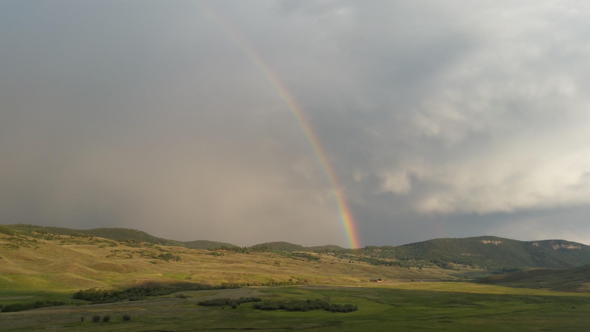 rainbow_lc