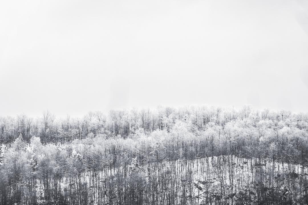 Montagne-novembre19