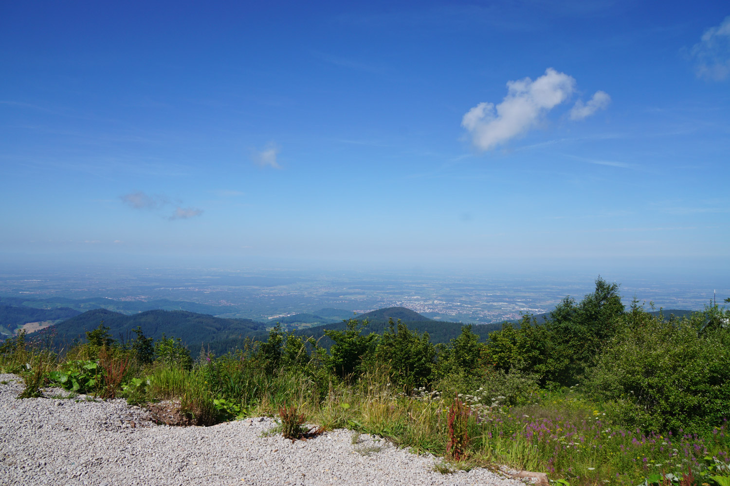 View from the 'Hornisgrinde'